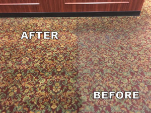 Area Rug Before After Photo