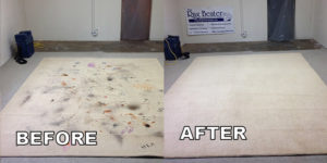 area rug cleaning demo